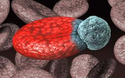 komórka-krwi-wirus-8527787 pl.dreamstime