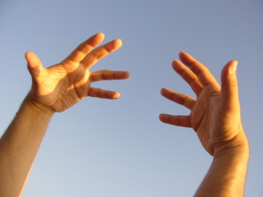 071228_human_hands