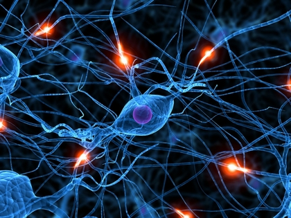 brain%20synapse%20neurons%201600x1200%20wallpaper_www_wallpapername_com_11