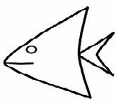 rybka6
